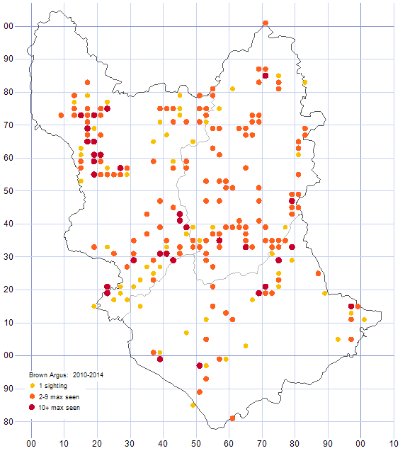 Brown Argos distribution map 2010-14