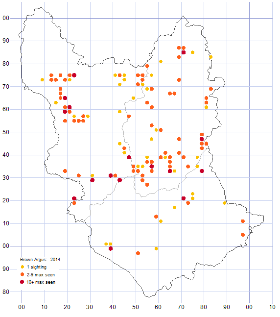 Brown Argos distribution map 2014