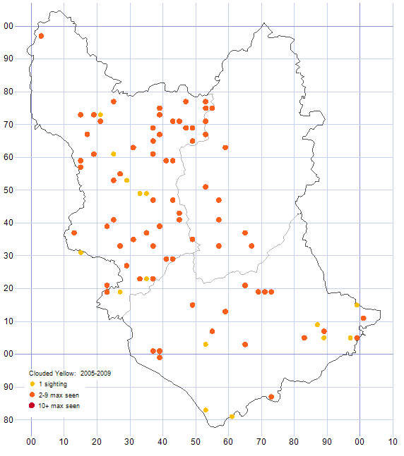 Clouded Yellow distribution map 2005-09