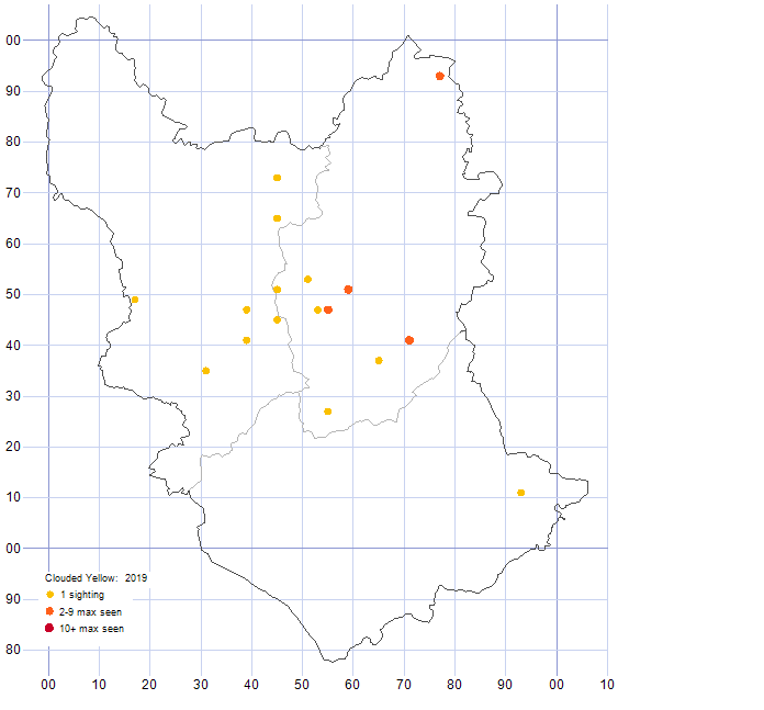Clouded Yellow distribution map 2019