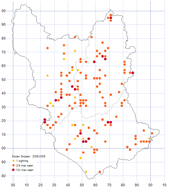 Essex Skipper distribution map 2005-09