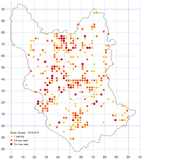 Essex Skipper distribution map 2015-19