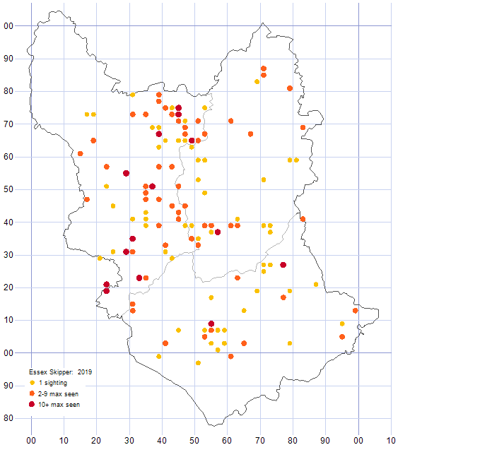 Essex Skipper distribution map 2019