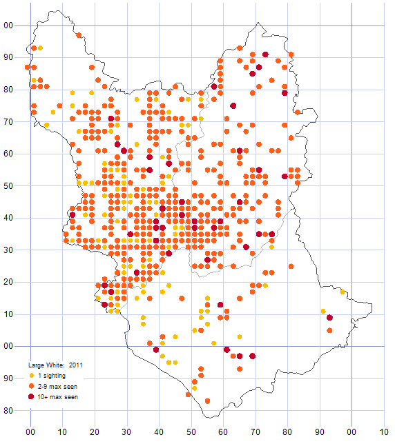 Large White distribution map 2011