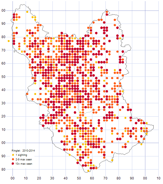 Ringlet distribution map 2010-14