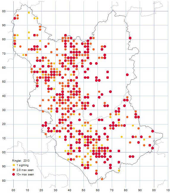 Ringlet distribution map 2013