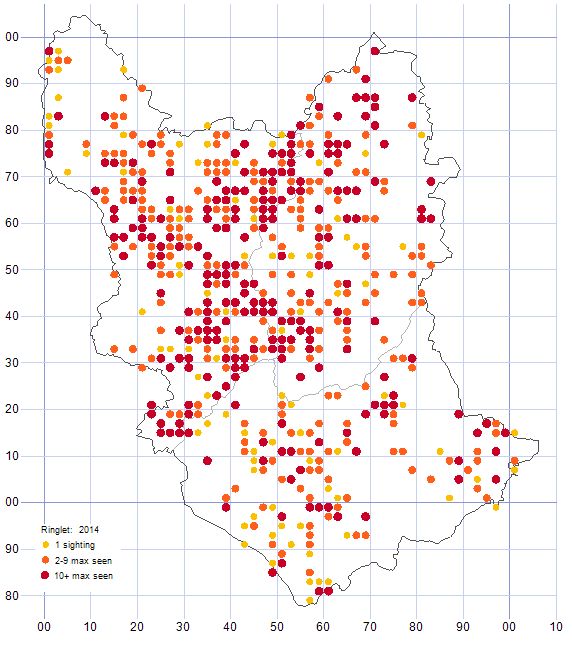 Ringlet distribution map 2014
