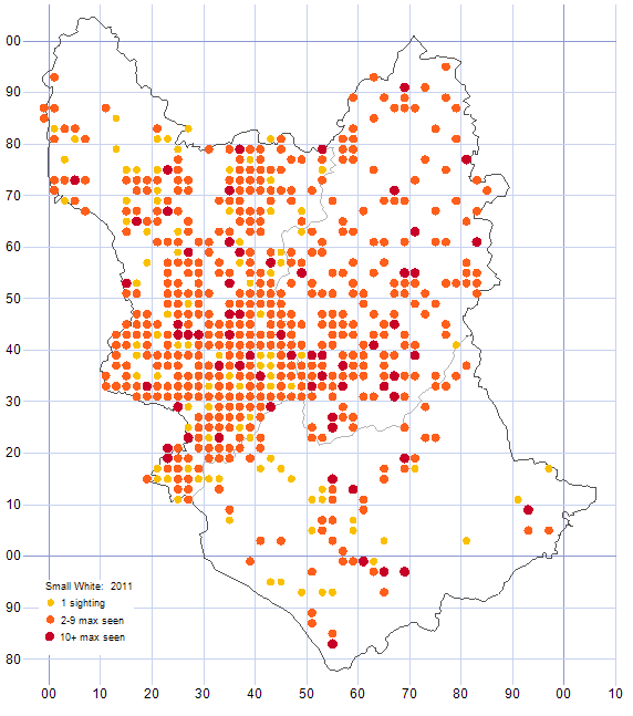 Small White distribution map 2011