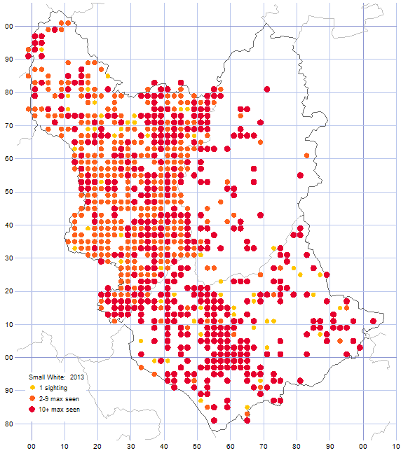 Small White distribution map 2013