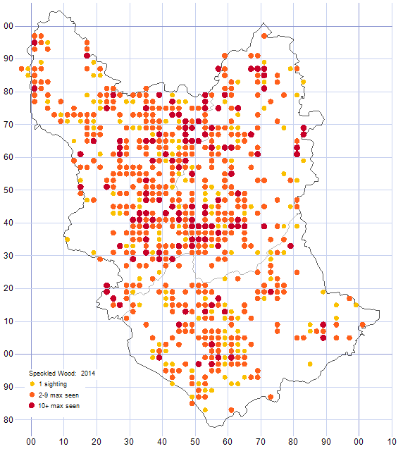 Speckled Wood distribution map 2014