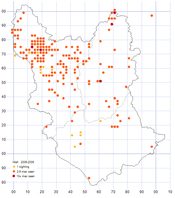 Wall distribution map 2005-09