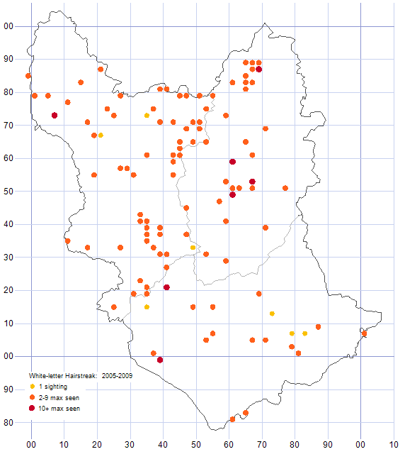 White-letter Hairstreak distribution map 2005-09