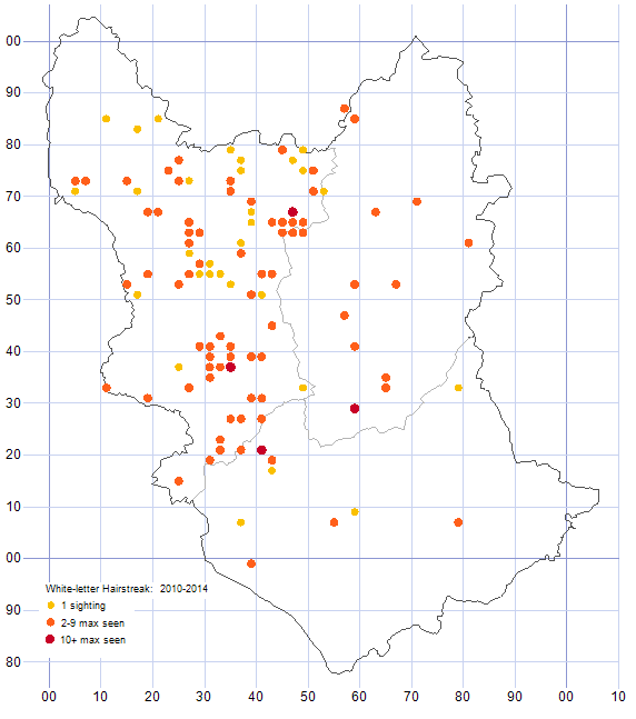 White-letter Hairstreak distribution map 2010-14