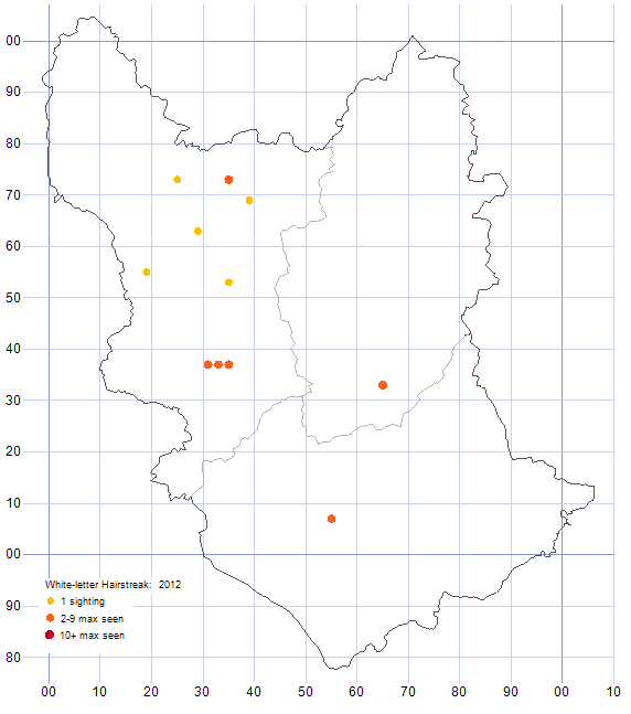 White-letter Hairstreak distribution map 2012