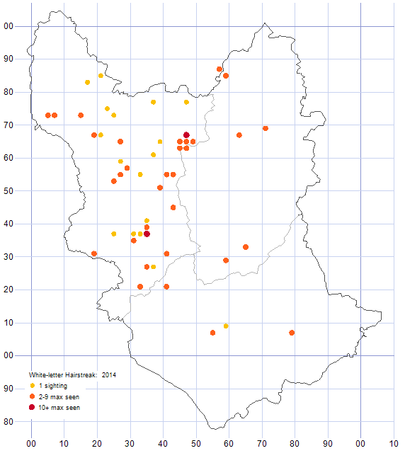 White-letter Hairstreak distribution map 2014
